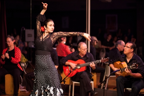 Alba Flamenca featuring Carolina Loyola-Garcia. Photo by Colter Harper.