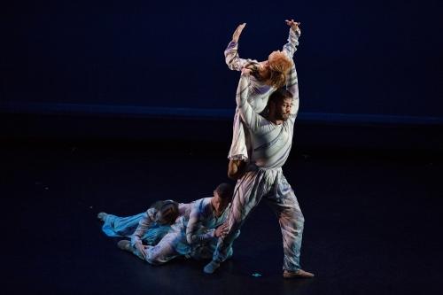 100717-DancingWheelsCompany-PastPresentFutureofIntegratedDance-byScottShaw-1 (500x333)